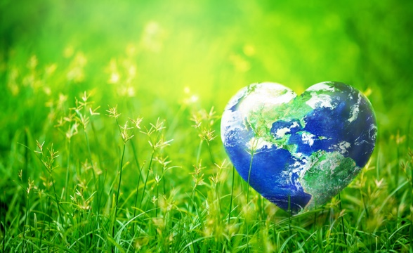 The planet needs us - green volunteering